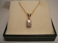 18ct Yellow & White gold pendant set with 2 Princess cut diamonds